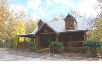 Mineral Bluff Single Family Home For Sale: 260 Cross Creek Road