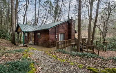Blue Ridge Single Family Home For Sale: 420 Hemlock Trail