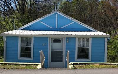 Ellijay Single Family Home For Sale: 46 Lucille Avenue