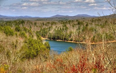 Blue Ridge Single Family Home For Sale: 240 Necowa Cove Overlook