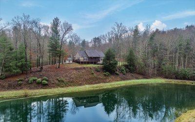 Ellijay Single Family Home For Sale: 3469 Tails Creek Church R