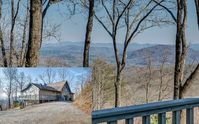Cherokee County Single Family Home For Sale: 120 Indigo Ridge