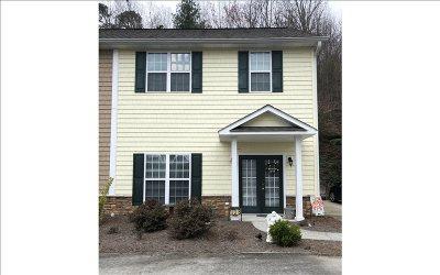 Ellijay Single Family Home For Sale: 173 B Boardtown Rd
