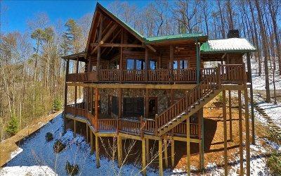 Blue Ridge Single Family Home For Sale: 1447 Grandeur Drive