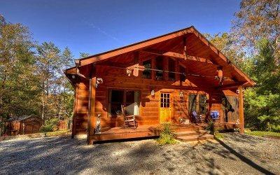 Blue Ridge Single Family Home For Sale: 201 Connie Lane