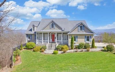Hiawassee Single Family Home For Sale: 3153 Blue Ridge Trail