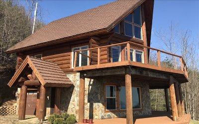 Cherokee County Single Family Home For Sale: 1185 Bird Knob Drive