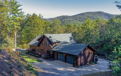 Ellijay Single Family Home For Sale: 4 Autumn Lane