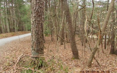 Ellijay Residential Lots & Land For Sale: 525 Camber