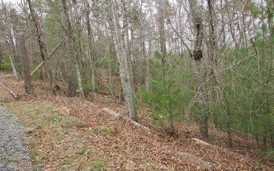 Ellijay Residential Lots & Land For Sale: 2954 Carlisle Drive