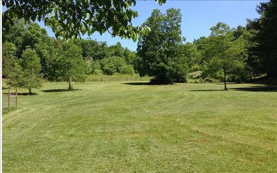 Hayesville Single Family Home For Sale: 188 George Sorrells Road
