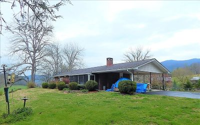 Hayesville Single Family Home For Sale: 4192 Downings Creek Rd
