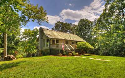 Blue Ridge Single Family Home For Sale: 599 Deer Hunter Rd