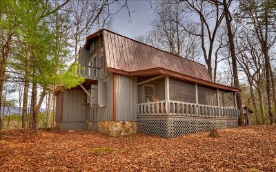 Ellijay Single Family Home For Sale: 730 Fowler Rd