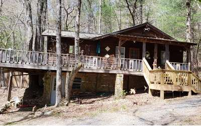 Blue Ridge Single Family Home For Sale: 166 Mountain Top Dr