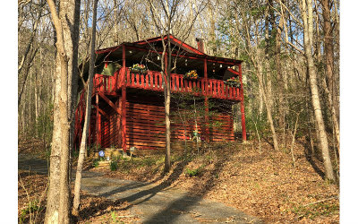 Hiawassee Single Family Home For Sale: 4254 Rock Creek Rd