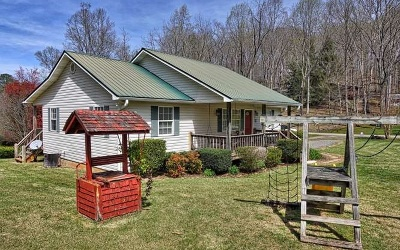 Hiawassee Single Family Home For Sale: 96 Sims Rd