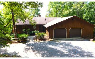Brasstown Single Family Home For Sale: 134 Weber Way