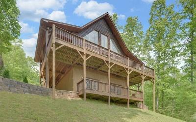 Cherokee County Single Family Home For Sale: 563 Dillon Oaks Drive
