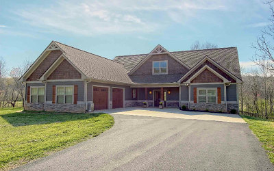Blairsville Single Family Home For Sale: 60 McKee Creek Lane