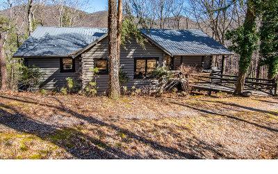 Ellijay Single Family Home For Sale: 30 Laurel Ridge Court