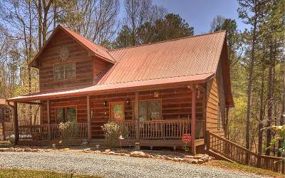Ellijay Single Family Home For Sale: 129 Tara Drive