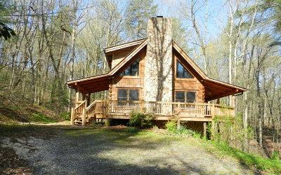 Ellijay Single Family Home For Sale: 196 Mossy Rock Ln