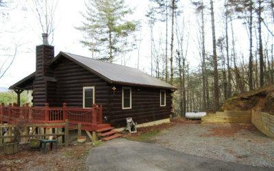 Ellijay Single Family Home For Sale: 108 Briar Creek Trail