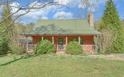 Hiawassee Single Family Home For Sale: 1139 Bearmeat Road