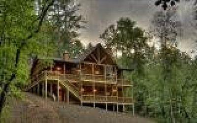 Blue Ridge Single Family Home For Sale: Lt 24 Stanley Crk Highland