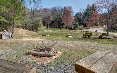 Cherokee County Single Family Home For Sale: 218 John Laurel Drive