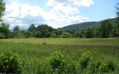Young Harris Residential Lots & Land For Sale: 1378 Mining Gap Road