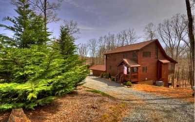 Mineral Bluff Single Family Home For Sale: 72 Gibbs Trail