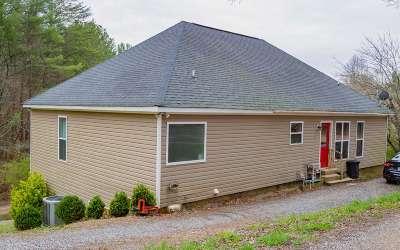 Ellijay Single Family Home For Sale: 110 Sunset Grove Lane