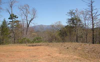 Andrews Residential Lots & Land For Sale: Pisgah Rd