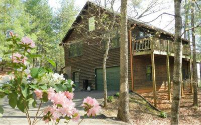 Ellijay Single Family Home For Sale: 824 Nexus Dr