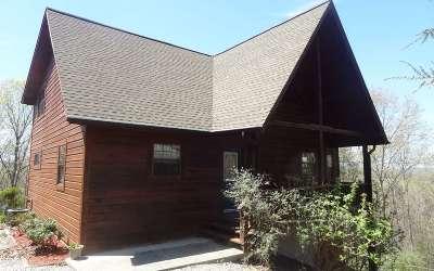 Blairsville Single Family Home For Sale: 283 Cobb Mountain Cir