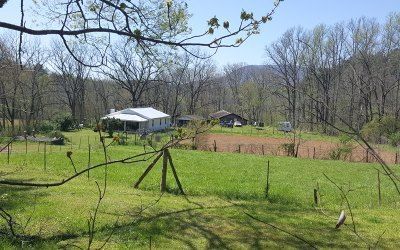 Gilmer County Single Family Home For Sale: 1620 East New Hope Road