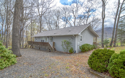 Hayesville Single Family Home For Sale: 123 Eagles View