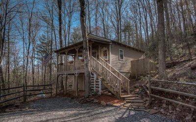 Blairsville Single Family Home For Sale: 1125 Old Sullivan Rd