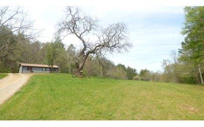Blue Ridge Single Family Home For Sale: 155 Carolina Lane