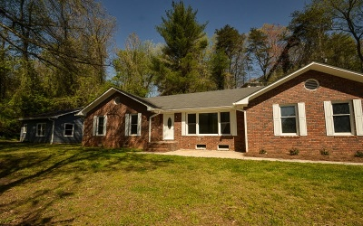 Ellijay Single Family Home For Sale: 163 Logan Circle