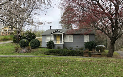 Blue Ridge Single Family Home For Sale: 45 Depot St