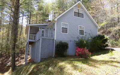Hiawassee Single Family Home For Sale: 8595 Soapstone Creek Cir