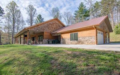 Blairsville Single Family Home For Sale: 59 Low Creek Lane