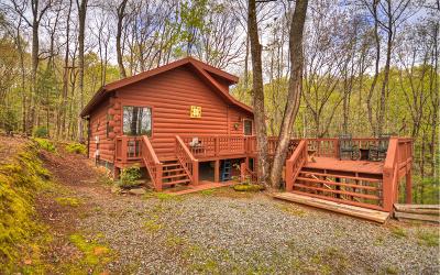 Blue Ridge Single Family Home For Sale: 79 Ridgeview Dr