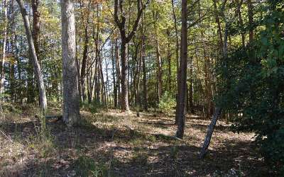 Residential Lots & Land For Sale: Whistle Pig Terrace