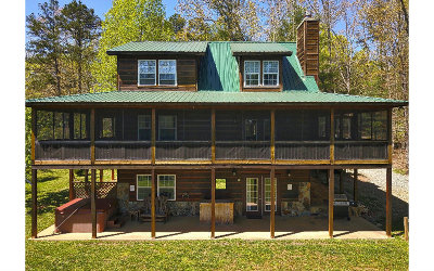 Blairsville Single Family Home For Sale: 153 Chapman Ford Road