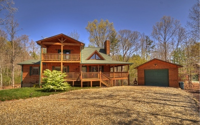 Blairsville Single Family Home For Sale: 211 Wrought Iron Trail