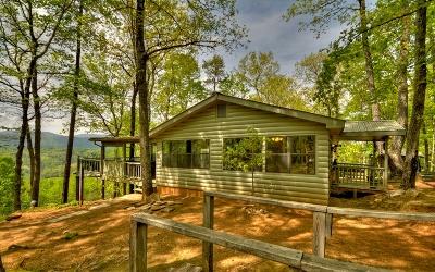 Blue Ridge Single Family Home For Sale: 1185 Mill Stone Mt Lane